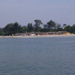 Шейки на пляже Гоа