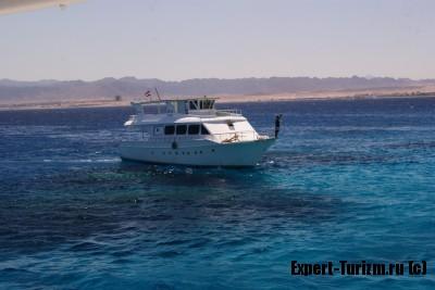 Остров Утопия, Египет, Красное море