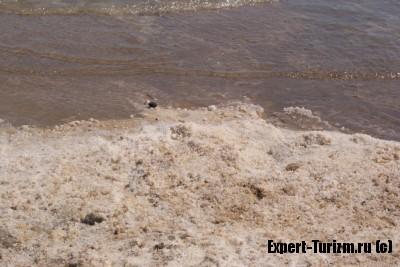 берег СПА Ейн Геди, Мертвое море, Израиль