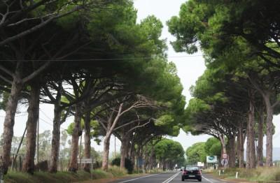 Бесплатные дороги Италии очень хорошего качества