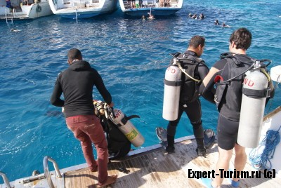 Dive Center White Dolphin, дайвинг
