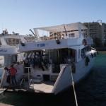 Дайв-центр «Белый дельфин» — WhiteDolphinDC