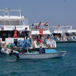 День очистки Красного моря — 14 октября 2015