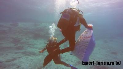 Сбор мусора на дне Красного моря